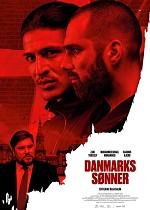 Danmarks sønner