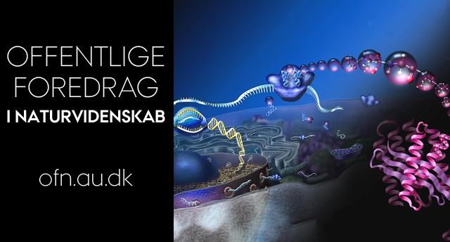 Foredrag: Design af biomolekyler og nanorobotter